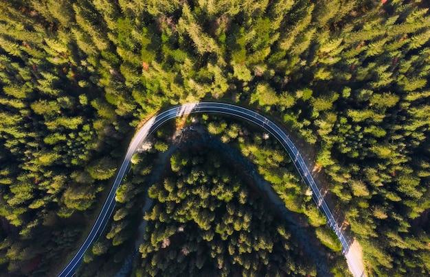 Luchtfoto van de weg in het bos van bovenaf.