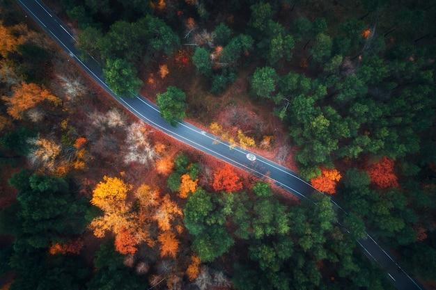 Luchtfoto van de weg in het mooie herfst bos