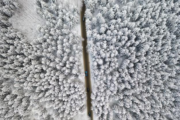 Luchtfoto van de weg met auto's in het bos van de winter met hoge dennen of sparren bedekt met sneeuw. rijden in de winter.