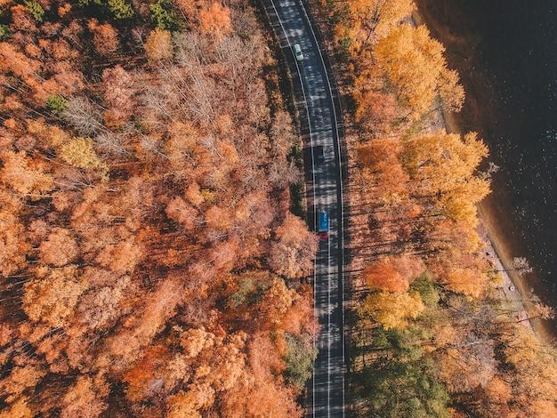 Luchtfoto van dik bos in de herfst met weg doorsnijden. rusland, st. petersburg