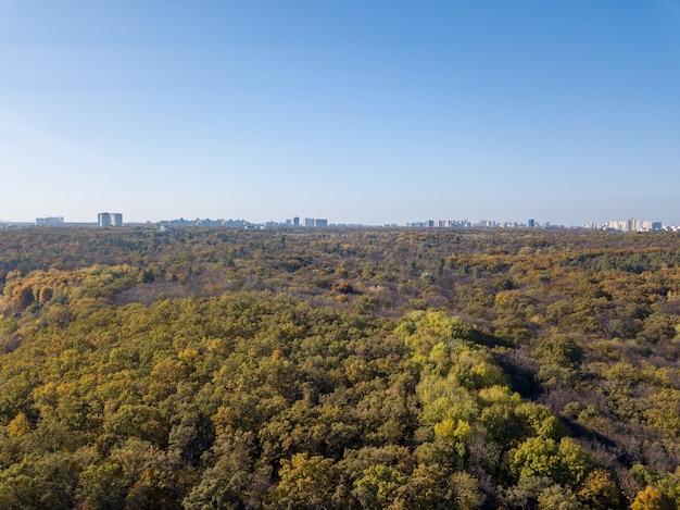 Luchtfoto van drone boven bosgebied met skyline met silhouet van stad voortbouwend op de achtergrond van de blauwe hemel in een zomerdag.