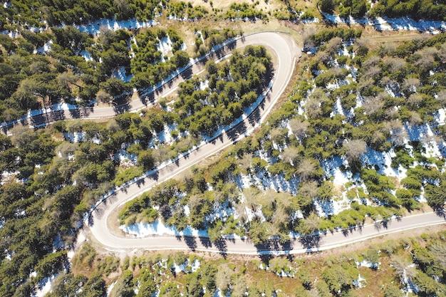 Luchtfoto van een bochtige weg die door een prachtig bos gaat