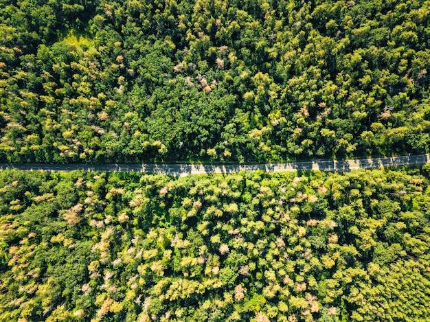 Luchtfoto van een drone op een groen bos met asfaltweg op een zonnige dag. natuurlijke lay-out voor uw ideeën.