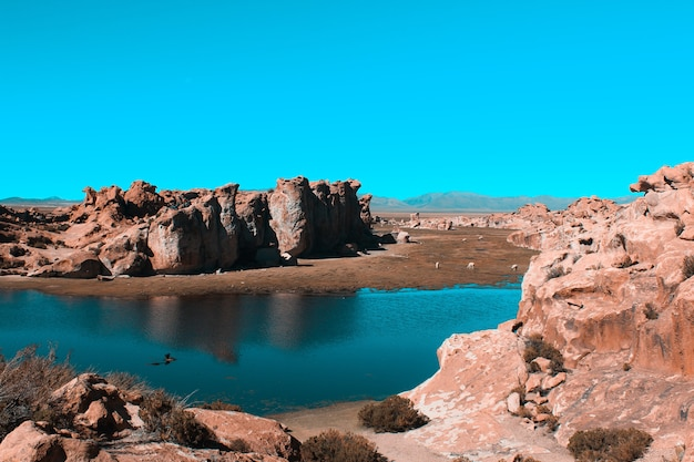 Luchtfoto van een meer in het midden van een woestijn op een zonnige dag