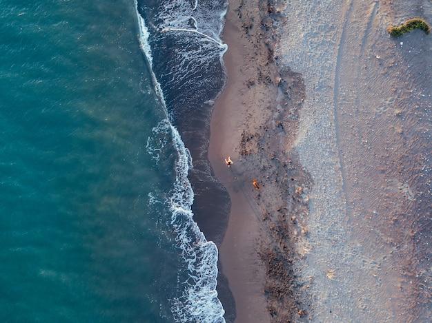 Luchtfoto van een meisje met haar hond op een maagdelijk strand, in natuurpark punta entinas, almeria, spanje