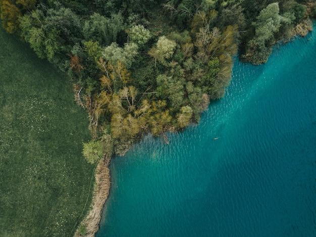 Luchtfoto van een prachtig boombos aan de kust van de zee