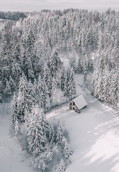 Luchtfoto van een prachtig winterlandschap met dennenbomen en een hut bedekt met sneeuw
