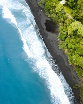 Luchtfoto van een prachtige kust van de zee met een bos aan de zijkant