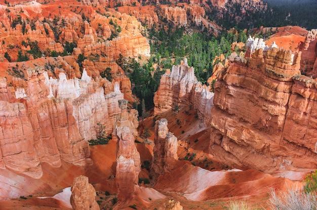 Luchtfoto van een rotsachtige berg canyon met rode bodem en bedekt met groenblijvende bossen