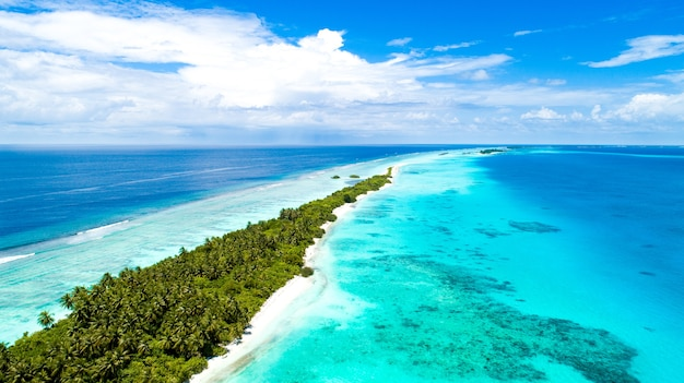 Luchtfoto van een smal eiland bedekt met tropische bomen in het midden van de zee in de maldiven