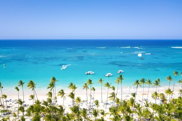 Luchtfoto van een tropisch eiland met palmbomen
