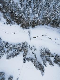 Luchtfoto van een weg omgeven door pijnbomen met een blauwe lucht in de winter
