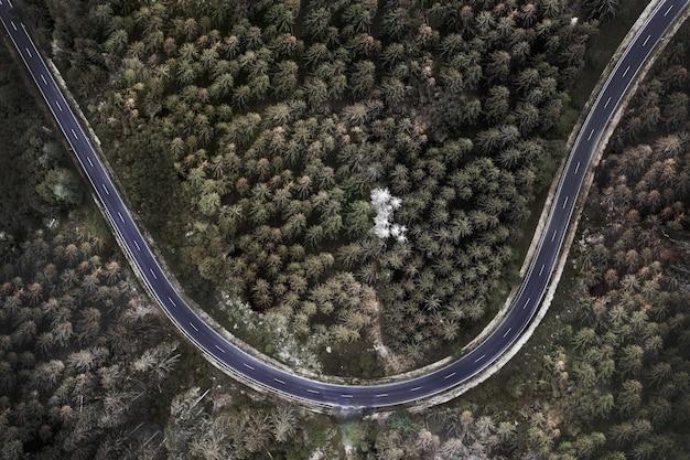 Luchtfoto van een weg tussen een betoverend dicht bos