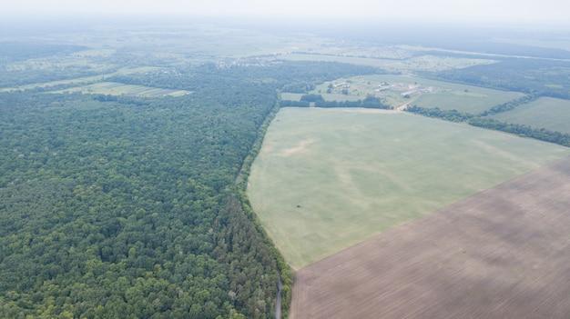 Luchtfoto van groen veld