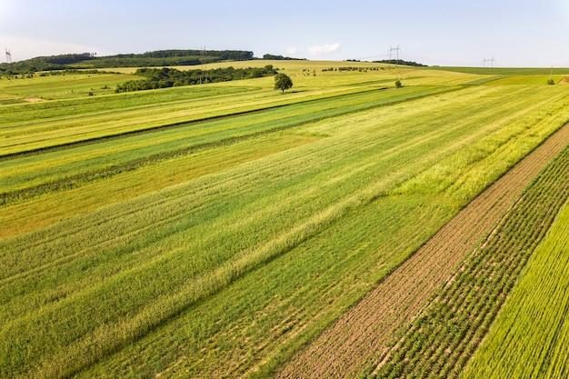 Luchtfoto van groene landbouwvelden in het voorjaar met verse vegetatie na het zaaien seizoen op een warme zonnige dag