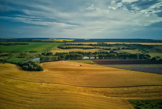 Luchtfoto van het groene velden vóór oogst in de zomer