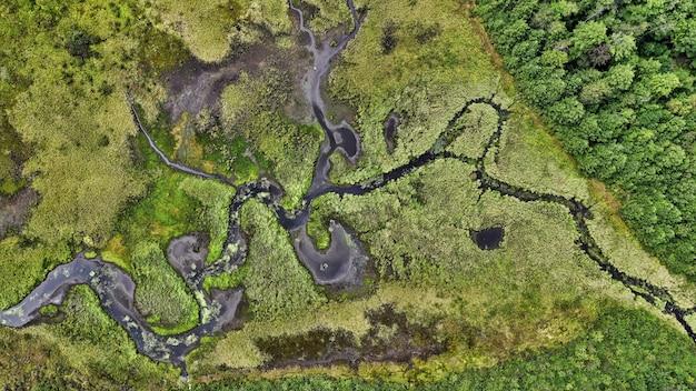 Luchtfoto van het landschap van het prachtige groen van het platteland
