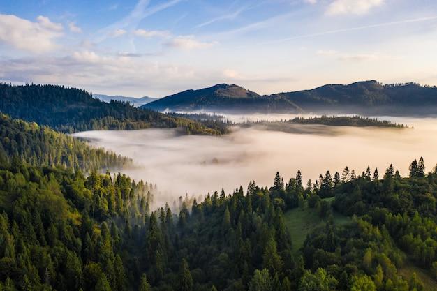 Luchtfoto van kleurrijke gemengd bos gehuld in ochtendmist op een mooie herfstdag
