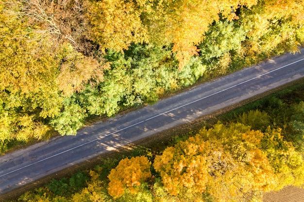 Luchtfoto van lege weg tussen gele val bomen.