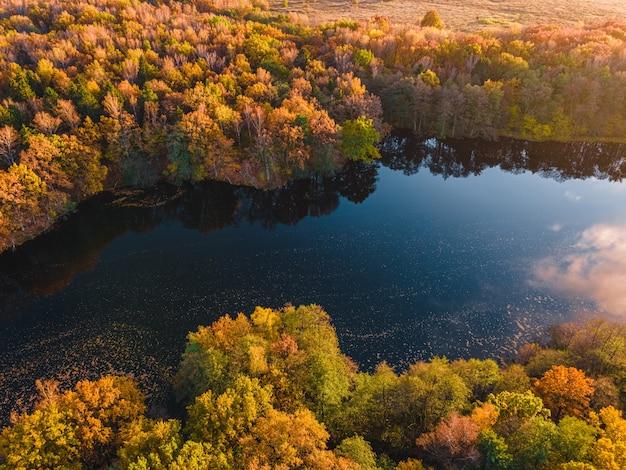 Luchtfoto van meer in prachtig herfstbos uitzicht vanaf drone
