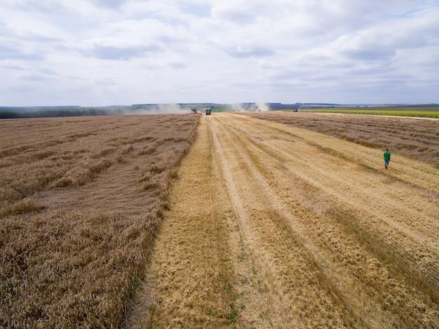 Luchtfoto van oogsten in het tarweveld
