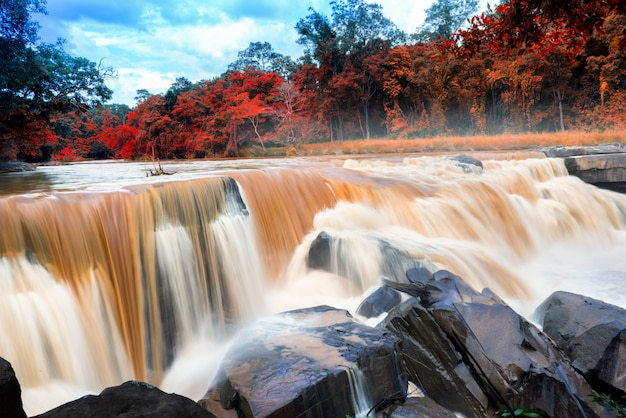 Luchtfoto van prachtige natuurlijke rivier waterval en groen bos met bergen concept reizen op seizoensverandering.