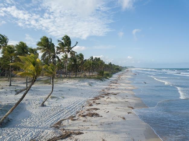 Luchtfoto van verlaten strand met kokospalmen