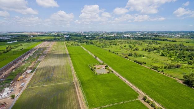 Luchtfoto van vliegende drone van rijstveld met landschap groen patroon aard achtergrond