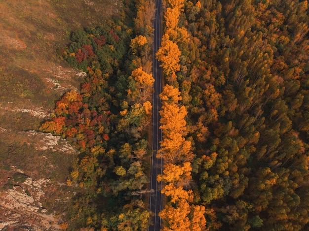 Luchtfoto van weg in prachtige herfst bos