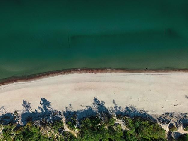 Luchtfoto van zandstrand, zee en bos aan de oostzee in zelenogradsk, regio kaliningrad, rusland