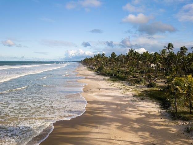 Luchtfoto verlaten strand met kokospalmen aan de kust van bahia, brazilië.