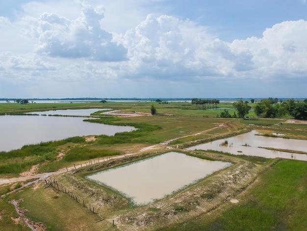 Luchtfoto: vliegen vanaf het platteland rijstveld in thailand.