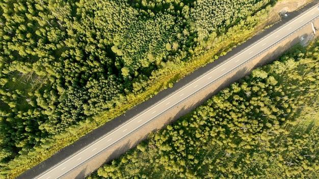 Luchtfoto vogelperspectief over een lege landweg tussen groene bossen