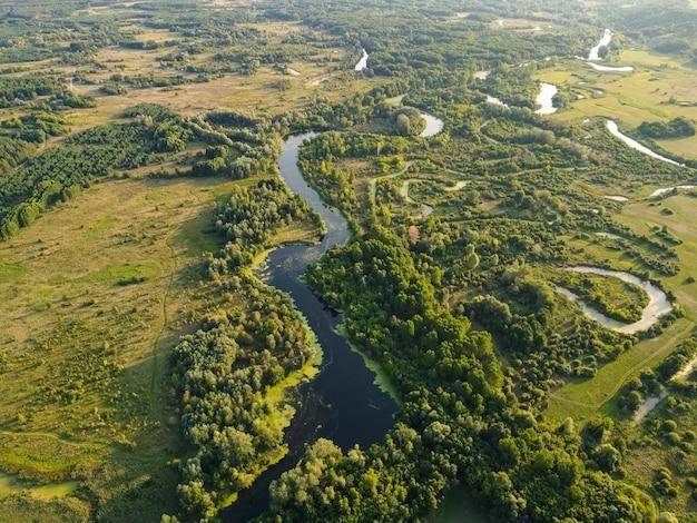 Luchtmening over de rivier die op het groene bos is.