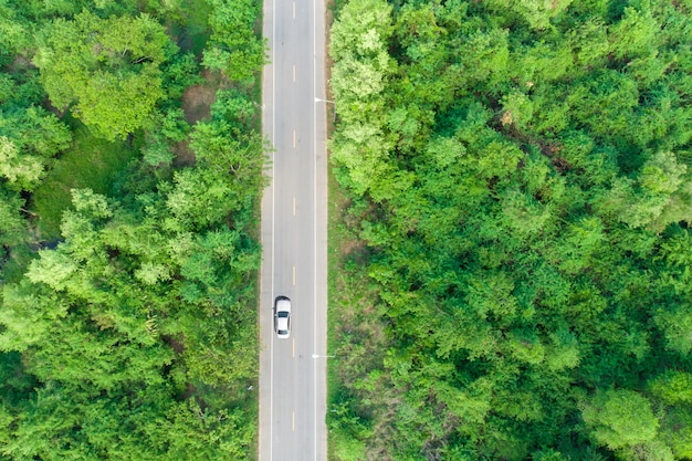 Luchtmening van de weg die het bos met een voorbij passerende auto overgaat