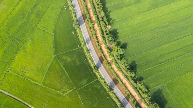 Luchtmening van groene padievelden met weg in thailand