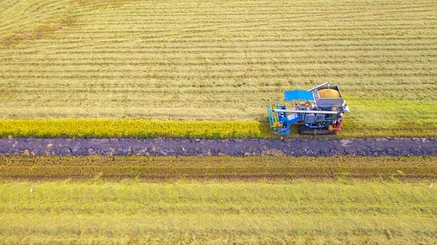 Luchtmening van maaimachinemachine die in padieveld van hierboven werken