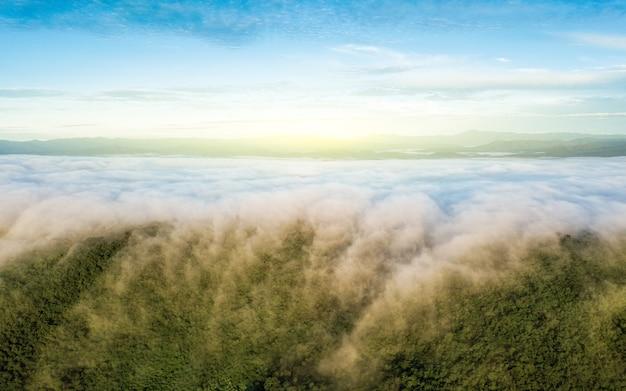 Luchtmening van regenwoud met mist en zonlicht in de ochtend.