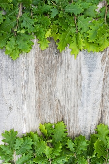 Luchtmening van verse eikelbladeren over oude houten oppervlakte