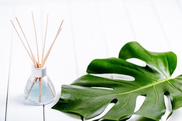 Luchtopfrisfles en blad van een monstera met wit oppervlak