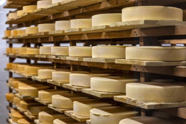 Lussen van kaas in op houten planken in een opslag.