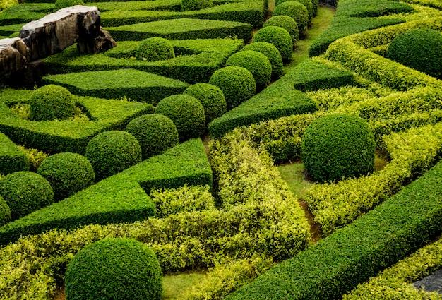 Luxe landschapsontwerp van de tropische tuin. prachtig uitzicht op tropische landschap