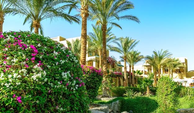Luxe tropisch hotelresort. zomer vakantie achtergrond