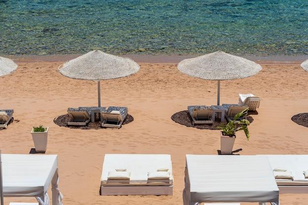 Luxe zandstrand met strandstoelen en witte stroparasols in tropisch resort aan de kust van de rode zee in egypte, afrika. lege stranden tijdens quarantaine