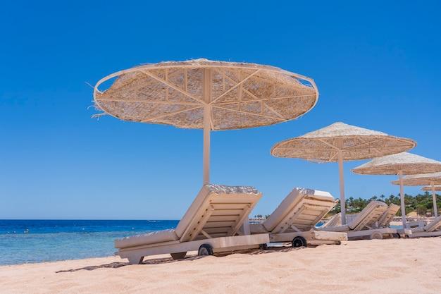 Luxe zandstrand met strandstoelen en witte stroparasols in tropisch resort aan de kust van de rode zee in sharm el sheikh, egypte, afrika. lege stranden tijdens quarantaine