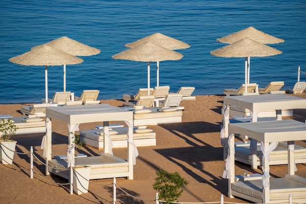 Luxe zandstrand met strandstoelen en witte stroparasols in tropische toevlucht in de kust van de rode zee in egypte, afrika egypt