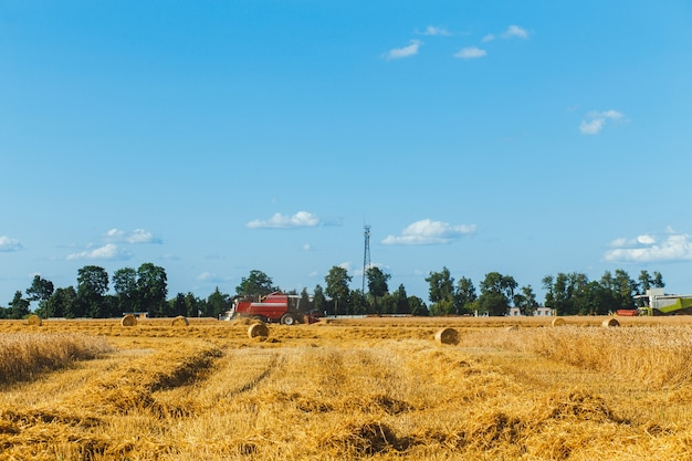 Maaidorser oogst tarwe