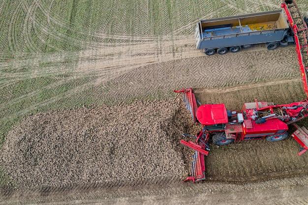 Maaidorser verwijdert suikerbieten, luchtfoto