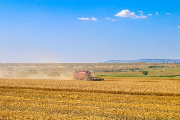 Maaimachine machine werkzaam in veld. combineer harvester landbouwmachine gouden rijp tarweveld oogsten.