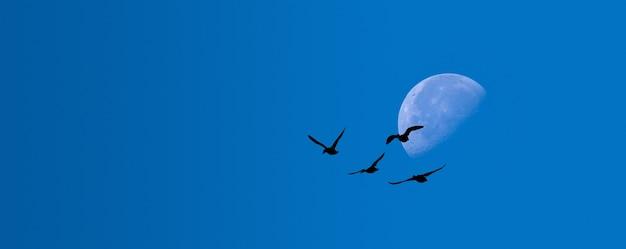 Maan op een achtergrond van blauwe hemel